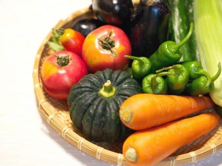 ユーグレナに含まれる59種類の栄養素ビタミン類14種を分析